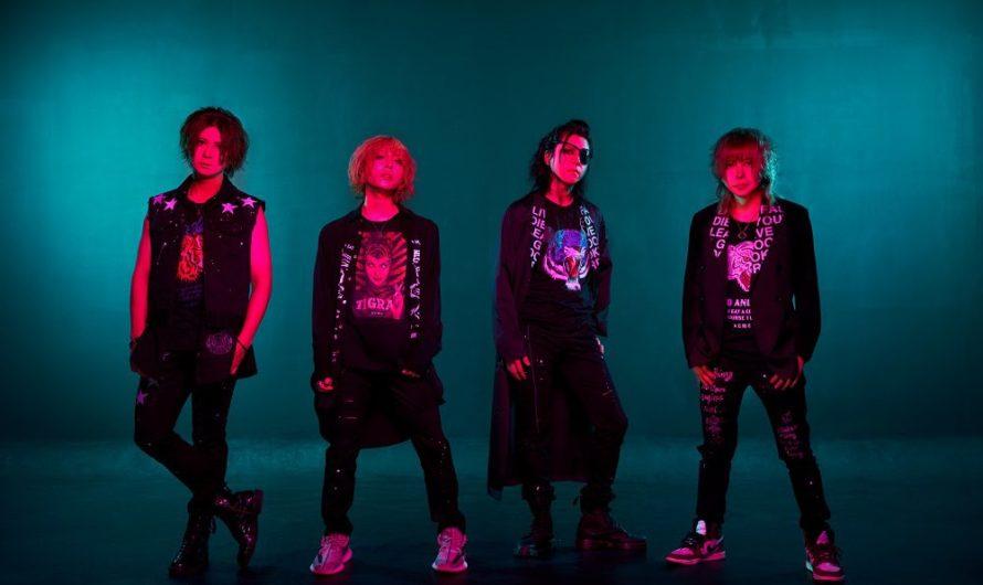 ACME – New MV «RISING SUN»