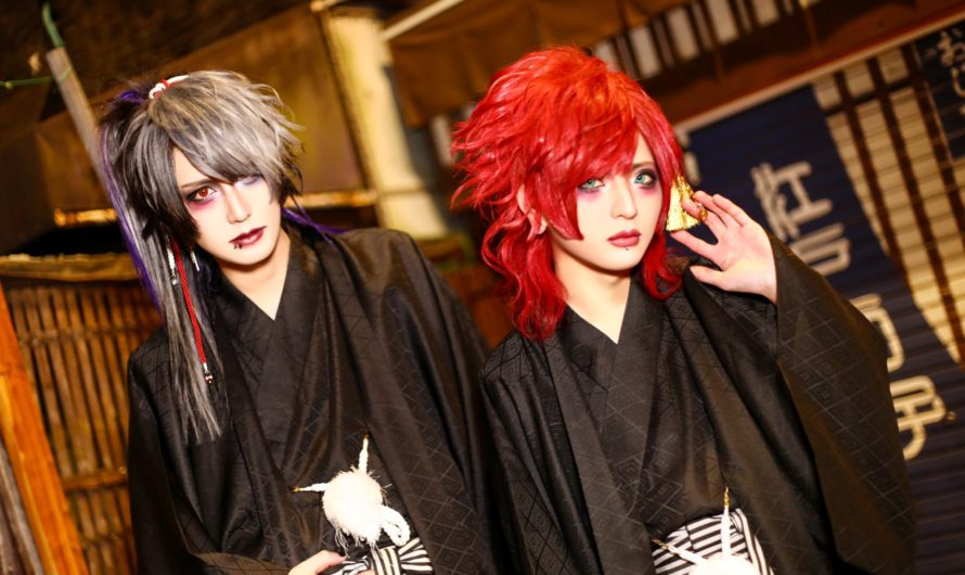 Re;dark project – New look