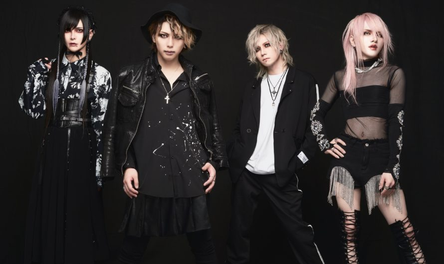 JILUKA – New look