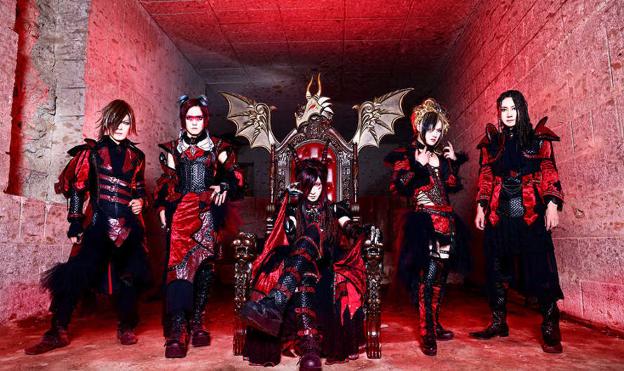 D – New album «Zmei» and new look